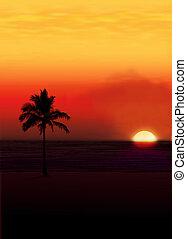 Palm against a setting sun..