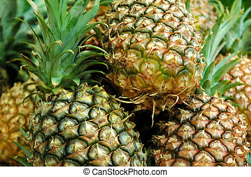 The Pineapples 2