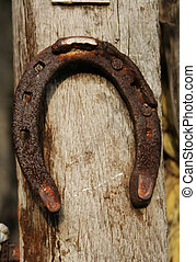 Horseshoe on fence