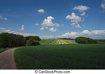 Peaceful Hills - These rolling hills in the Palatine area of...