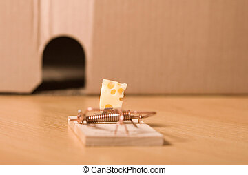 mousetrap and cheese