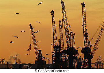 Industry - Cranes in Hamburg harbor, germany.
