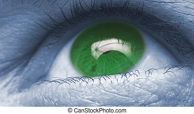 eye close up blue and green color