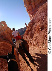 Horseback riding - Riding in Bryce canyon