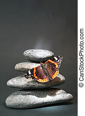 Pebblesand Butterfly - Pebble stack with red admiral...