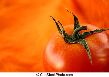 tomato on orange back ground