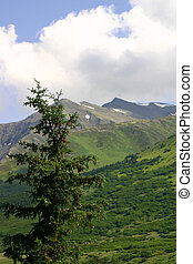 Alaskan Mountains - Alaskan mountain range