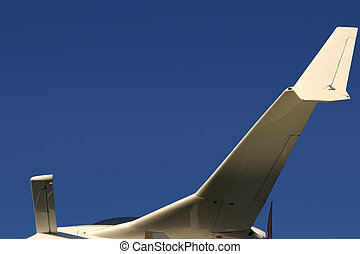 Canard Airplane - A contemporary airplane with an unusual...