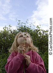 Young female blowing dandelion seeds, - Young school girl...