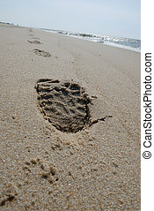 Prints - Footprint on the beach
