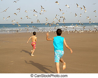 Boys chasing birds - Two boys running after the birds on the...