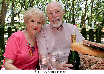 Picnic Together - A senior couple enjoying a picnic in the...