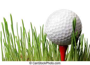 Golf Ball in Grass - Golf ballon tee in grass with white...