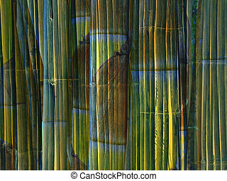 Bamboo background - Design of bamboo stems