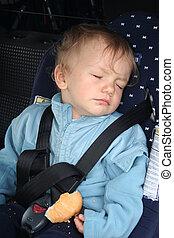 Back seat sleeper