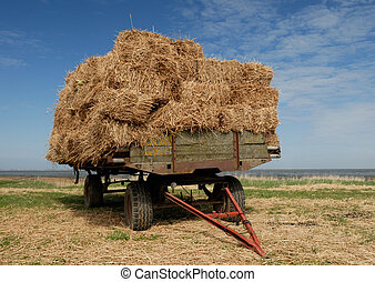Straw - Farmer´s trailer on the meadow.