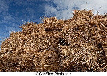 Hay - Straw on a trailer