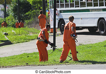 prisoner labor 1 - Prisoners out doing weed eating and...