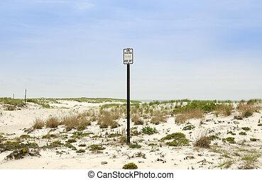 Dunes - Photo of Dunes