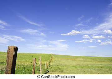 Fence line - Rural scene with a fence line
