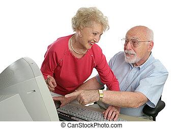 Senior Computer Lesson Question - A senior lady teaching a...