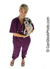 Vet Dog Clipping Pat - Beautiful vet holding silver toy...
