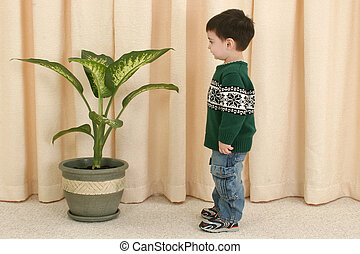 Boy and Plant