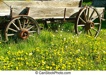 western theme - antique horse wagon parked in field