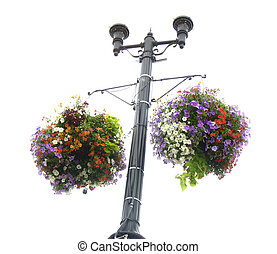 floral planter - hanging planter filled with spring flowers...