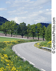 Idyllic country road - Idyllic sommer view of a road thru a...