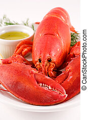 Lobster - Boiled lobster with butter and dill