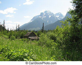 old cabin with mountain view