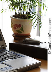 Office environment - Business office environment