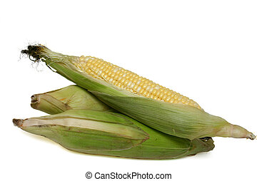 corn cobs - three corn cobs on white background