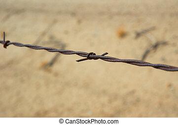 barbed-wire, escrime