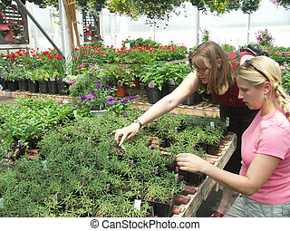 Friends at the greenhouse - Two women shopping for plants...