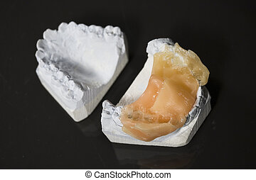 Model of tooth - Gypsum\\\'s invert model of tooth for...