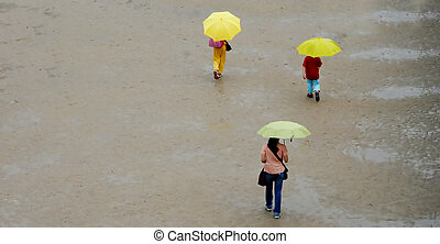 Umbrellas - Aerial image of three people walking in the rain...