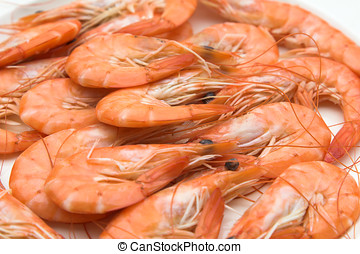 Plate of prawns - Plate of fresh prawns