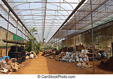 Large greenhouse - Soil preparation in a large commercial...