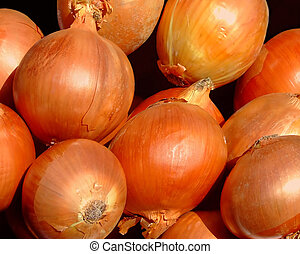 Red onion - Bunch of red onion