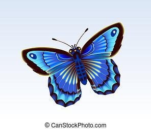 Butterfly 12 - Digital illustration. Gradient mesh....