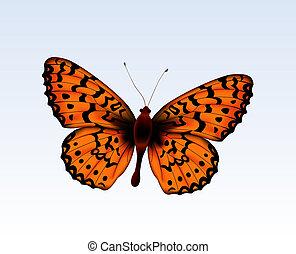Butterfly 2 - Digital illustration. Gradient mesh....