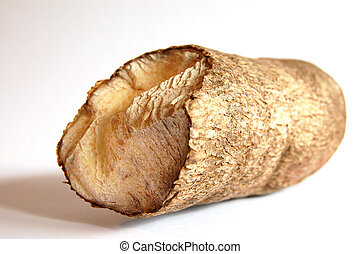 African Yam - This is an image of a tube yam.