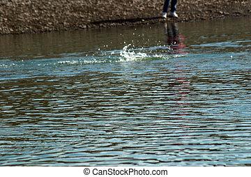 Salmon Fishing - Salmon fishing during the Silver Salmon run...