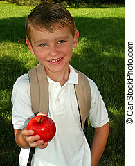 boy going back to school - boy taking an apple for his...