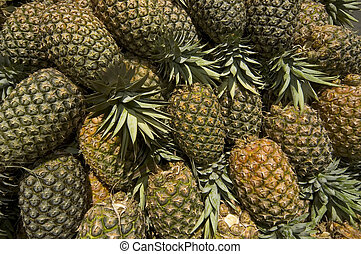 Pineapples - Pineapple products in the Philippines