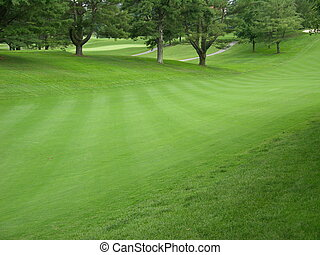 Fairway greens - golf fairway