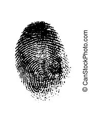 Finger Print - A finger print on a white background