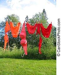 Clothesline - Bikinis hanging on a clothesline